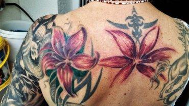 Předělávka tetování kolibřík